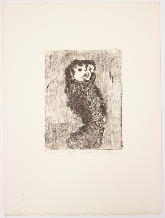 "Etching, ""Tawny Owl"",  [between 1979 and 1982]. Joseph Prezament. Jewish Public Library Archives, 1291_00053."