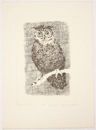 "Etching, ""Horned Owl"",  [between 1979 and 1982]. Joseph Prezament. Jewish Public Library Archives, 1291_00058."